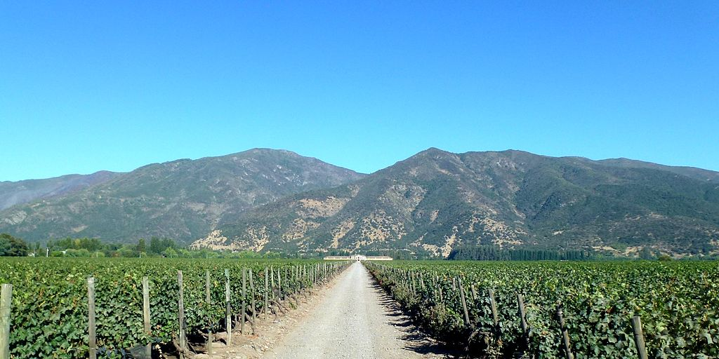winery_valle_colchagua_chile_-_panoramio_1